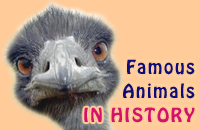 Famous Animals in History